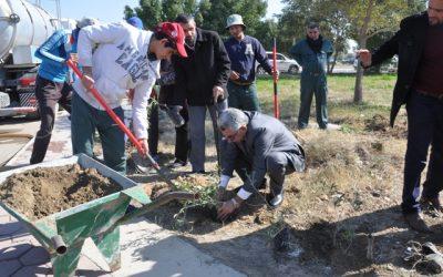 جامعة واسط  تنظم حملة استزراع اكثر من 2000 شجرة زيتون