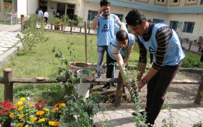 حدائق كلية التربية تشهد حملة للتشجير والتطوير والتنظيم